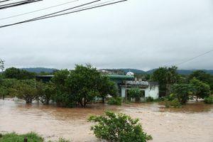 Đắk Lắk: Cứu kịp thời 2 người bị nước cuốn trôi giữa phố