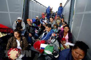 Mỹ bắt giữ hàng trăm người di cư bất hợp pháp
