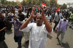 Saudi-Arabia và UAE chuyển 540.000 tấn lúa mì tới Sudan