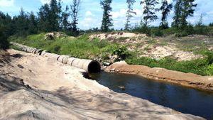 Mùi hôi thối bên cơ sở nuôi tôm xả nước bẩn ra môi trường