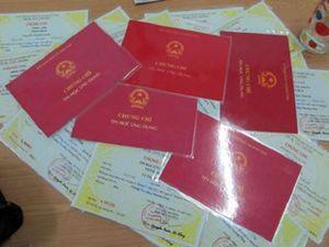 Bao nhiêu quan Việt xài bằng cấp không hợp pháp?