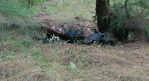Bình Định: Tá hỏa phát hiện thi thể người đàn ông chết cháy sau nhà