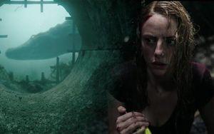 Siêu phẩm cá sấu tử thần 'Crawl' kinh dị và bạo lực đến mức nào?