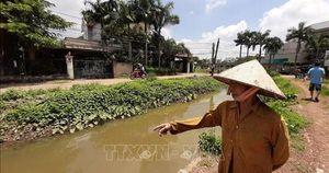 Người phụ nữ Đồng Xoài hiến đất để hồi sinh con suối 'chết'