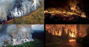 Những hình ảnh rợn người vụ cháy kỷ lục ở 'lá phổi xanh' Amazon