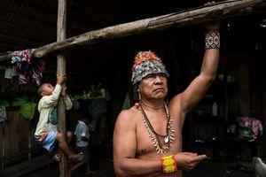 Đập thủy điện đe dọa cuộc sống các bộ lạc Brazil ven sông Amazon