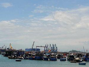 Quảng Ngãi: Tìm nơi neo đậu tàu thuyền cho ngư dân vùng dự án