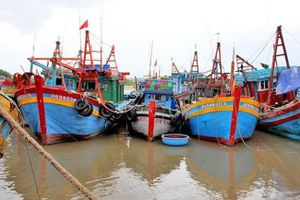 Xót xa hàng loạt tàu cá nằm bờ vì thua lỗ