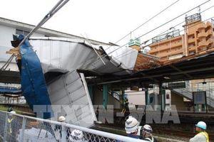 Nhật Bản: Hàng chục người bị thương do siêu bão Faxai