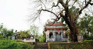 Thừa Thiên - Huế công nhận Làng cổ Phước Tích là điểm du lịch
