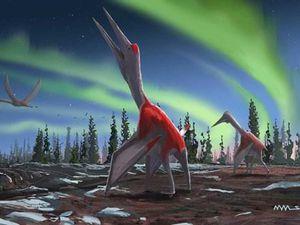 Phát hiện một loại động vật bay lớn nhất mọi thời đại