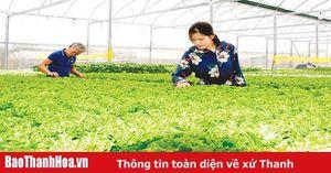 Nhân rộng mô hình phát triển sản xuất trong xây dựng nông thôn mới