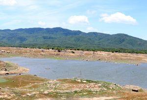 Nhiều hồ chứa ở Ninh Thuận sắp cạn kiệt, nguy cơ thiếu nước vụ mùa