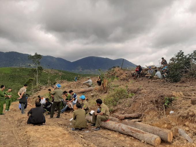 Lâm Đồng: Xử lý nghiêm vụ phá gần 2,5ha rừng ở Đam Rông