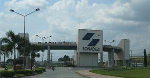 Cổ phiếu 'bốc hơi' 44% từ đỉnh, Sonadezi chuẩn bị chia cổ tức 5% bằng tiền