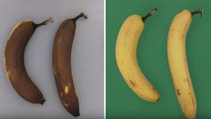 Công nghệ bảo quản thực phẩm hàng chục ngày không cần làm lạnh