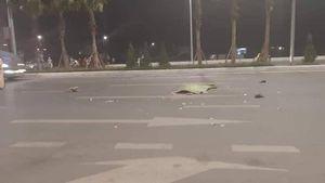 Người đàn ông đi bộ qua đường bị ô tô đâm thiệt mạng ở Quảng Ninh