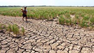 Biến đổi khí hậu khiến người dân hạ lưu sông Mekong khốn khổ