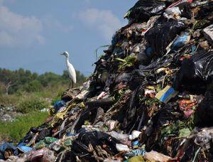 Hội An 'mắc kẹt' với núi rác khổng lồ