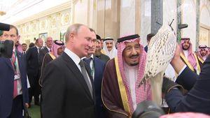 Thăm Ả Rập Saudi, ông Putin tặng Vua Salman chim ưng Kamchatka cực hiếm