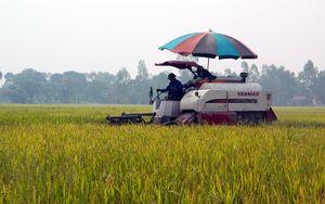 Những thành quả xây dựng nông thôn mới ở Hưng Yên