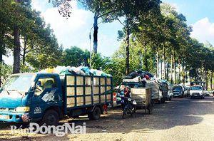 Cần lắm 'lá phổi xanh' cho đô thị Biên Hòa (Bài 2)