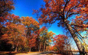 Đến Canada, ngẩn ngơ trước khung cảnh mùa thu đẹp như tranh vẽ