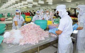 Kinh doanh bết bát, Thủy sản Hùng Vương (HVG) muốn bán hết 5 triệu cổ phiếu quỹ