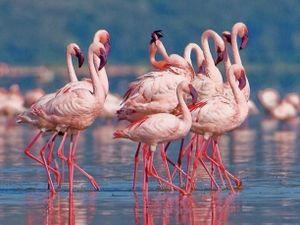 5 hồ nước đẹp nổi tiếng bởi sắc màu