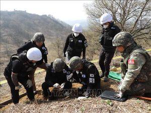 Hàn Quốc nối lại hoạt động tìm kiếm hài cốt binh sĩ trong chiến tranh Triều Tiên