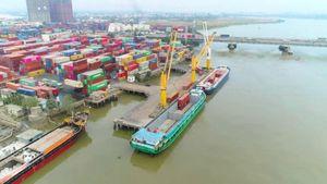 Chỉ định 8 cảng biển tiếp nhận hàng thủy sản nhập khẩu