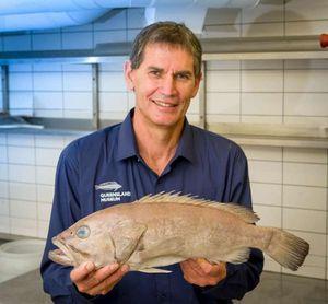 Loài cá chưa từng được biết trong khoa học, ăn vào nức nở khen ngon