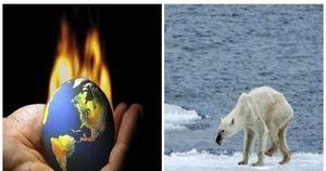 Trái Đất đang ở trong tình trạng khẩn cấp về khí hậu