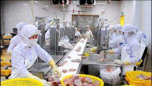 Xuất khẩu thủy sản Bình Định tăng trưởng ngoạn mục từ thị trường mới