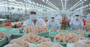 Quy định truy xuất nguồn gốc thực phẩm của các thị trường lớn