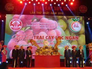 Sắp diễn ra Hội chợ cam, bưởi huyện Lục Ngạn năm 2019