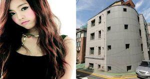 Tài sản khổng lồ của Goo Hara - nữ ca sĩ Hàn Quốc trẻ đẹp vừa tự tử tại nhà riêng