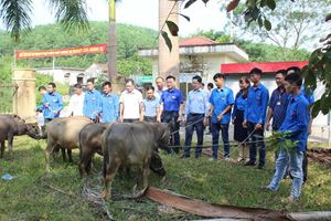 Quảng Ninh nỗ lực giảm tỷ lệ hộ nghèo theo chuẩn đa chiều