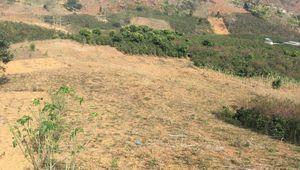 Sơn La: Doanh nghiệp 'thiệt đơn, thiệt kép' vì đất dự án vướng tranh chấp
