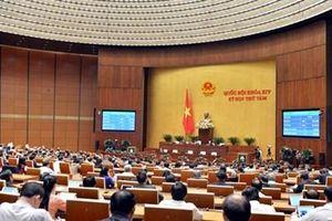 Thúc đẩy sự nghiệp thư viện ở Việt Nam phát triển lên một tầm cao mới