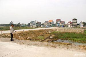 Nhiều huyện đồng bằng Nghệ An đấu giá được hàng trăm lô đất