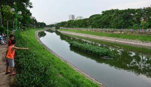 Phương án tối ưu hồi sinh sông Tô Lịch