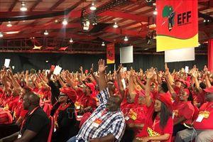 Thủ lĩnh đảng đối lập ở Nam Phi tái đắc cử
