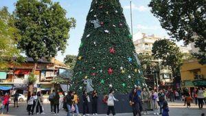 Hà Nội xuất hiện nhiều cây thông lớn đón Noel 2019