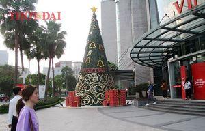 Chùm ảnh: Hàng loạt cây thông siêu to khổng lồ lung linh khắp phố phường Hà Nội