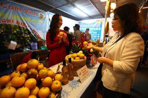 Khai mạc Tuần lễ cam Vinh và sản phẩm, đặc sản Nghệ An tại Hà Nội