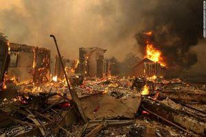 Hãi hùng sức hủy diệt của thảm họa thiên nhiên năm 2019