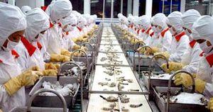 Kinh nghiệm áp dụng thành công công cụ lý chất lượng tại hải sản Hiệp Anh