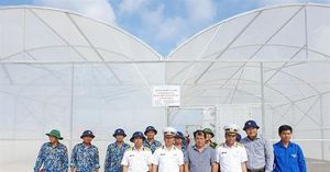 Chuyển giao tiến bộ kỹ thuật nông nghiệp trên đảo Trường Sa
