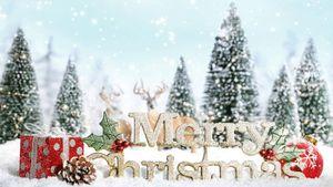 Những điểm check in đẹp khó cưỡng đón chờ bạn đêm Giáng sinh lung linh
